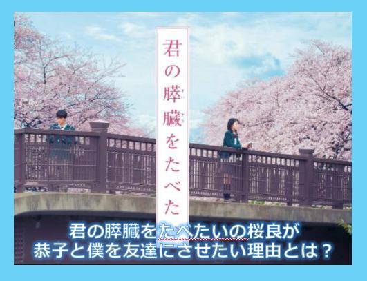 君の膵臓をたべたいの桜良が恭子と僕を友達にさせたい理由とは?